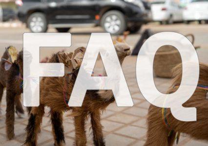 FAQ よく頂く質問